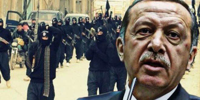 Czech Journalist… Erdogan's regime and its mercenaries commit war crimes in Syria