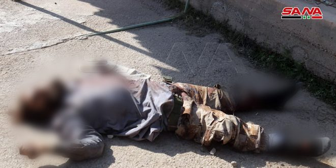 Army eliminates 3 terrorists in Deir Ezzor Badia who attacked passenger's buses