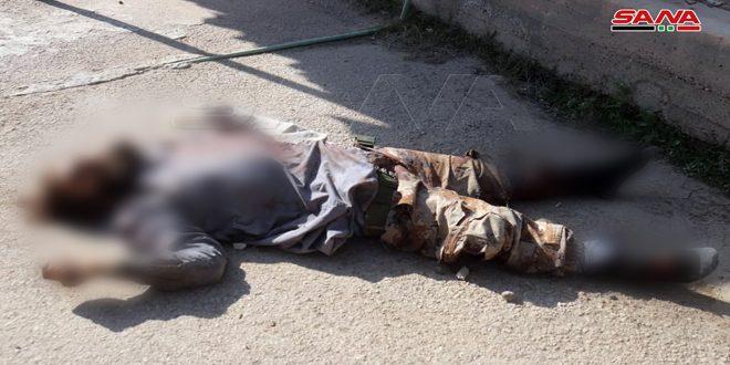 В провинции Дейр-эз-Зор уничтожены 3 террориста